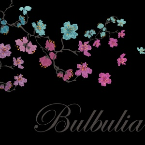 bulbulia-threads-logo